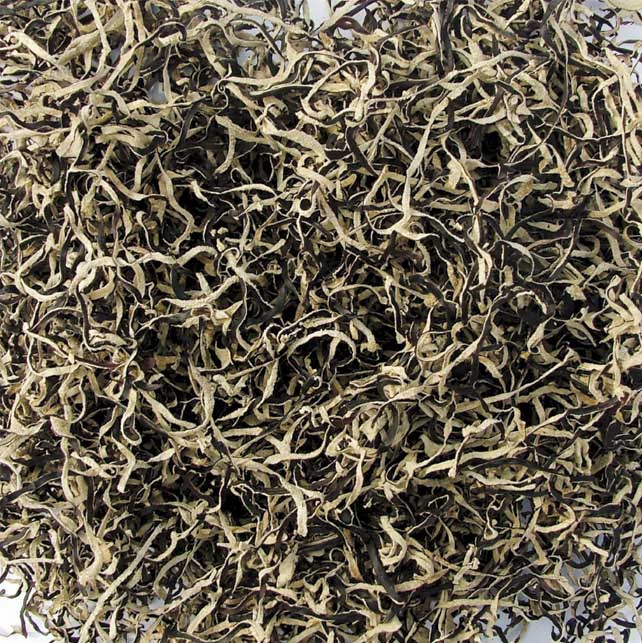 Strip Black White Fungus